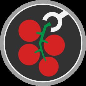 Récolte de grappes de tomates